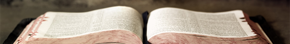Daily Bible Reading Schedule